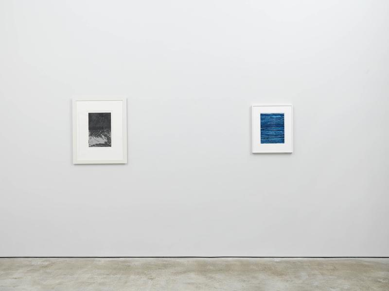 The Horizontal - Exhibitions - Cheim Read