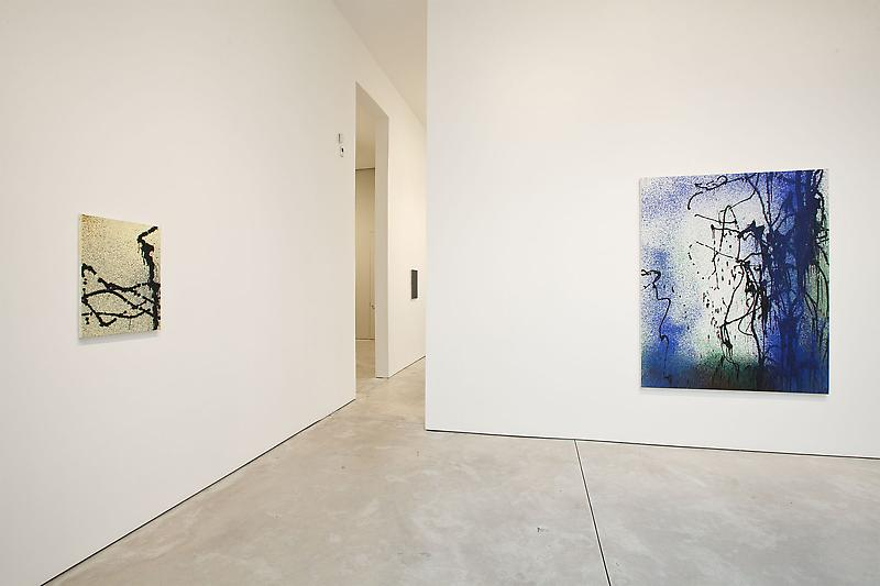 Hans Hartung The Last Paintings 1989 10/29 - 12/30/10