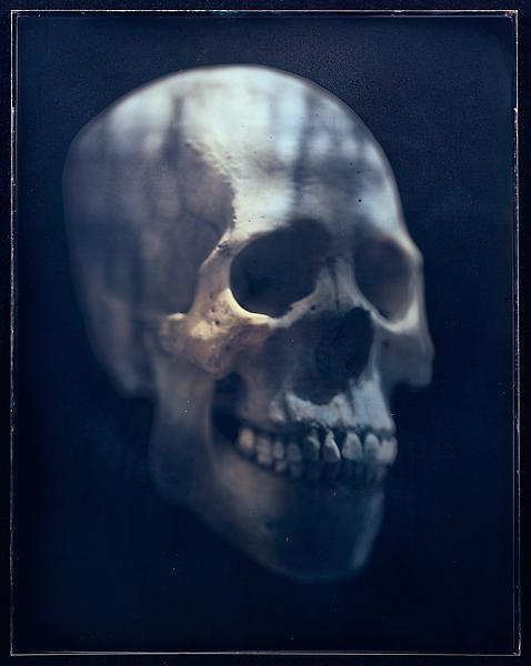 Adam Fuss 	UNTITLED, 2002 	Daguerreotype (toned) 	13 1/2 x 10 3/4 inches 	34.3 x 27.3 centimeters