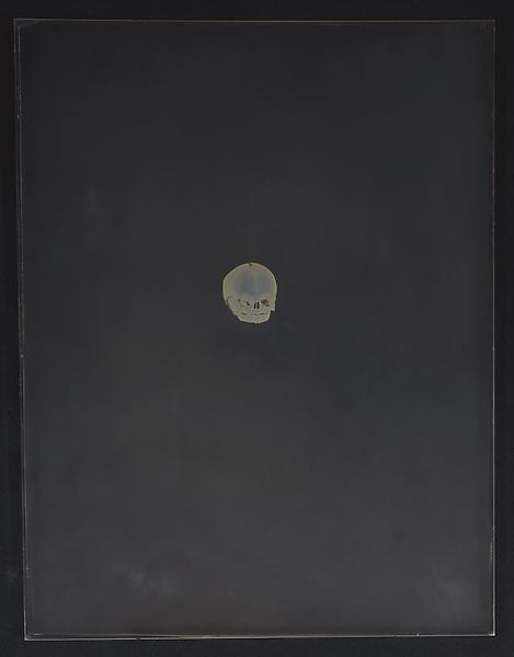 Adam Fuss 	UNTITLED, 2002 	Daguerreotype 	14 x 11 inches 	35.6 x 27.9 centimeters