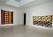 Claude Viallat - Exhibitions - Cheim Read