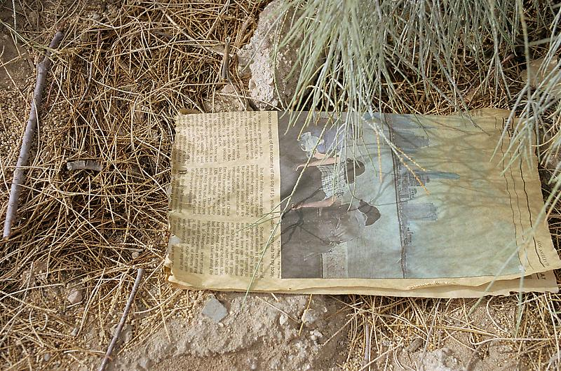 William Eggleston 	UNTITLED (NEWSPAPER ON GROUND, GRASS, CALIFORNIA) 2000 	Pigment print 	22 x 28 inches 	55.9 x 71.1 centimeters