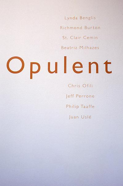 Opulent 	Artists Include: Lynda Benglis, Richmond Burton, St. Clair Cemin, Beatriz Milhazes, Chris Ofili, Jeff Perrone, Philip Taaffe, and Juan Uslé 	June 14 - September 1, 2000