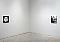 Paul Morrison - Exhibitions - Cheim Read