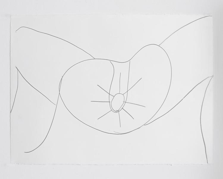 Jack Pierson UNTITLED 2012 Graphite on paper 22 1/2 x 30 inches 57.2 x 76.2 centimeters PI.35164