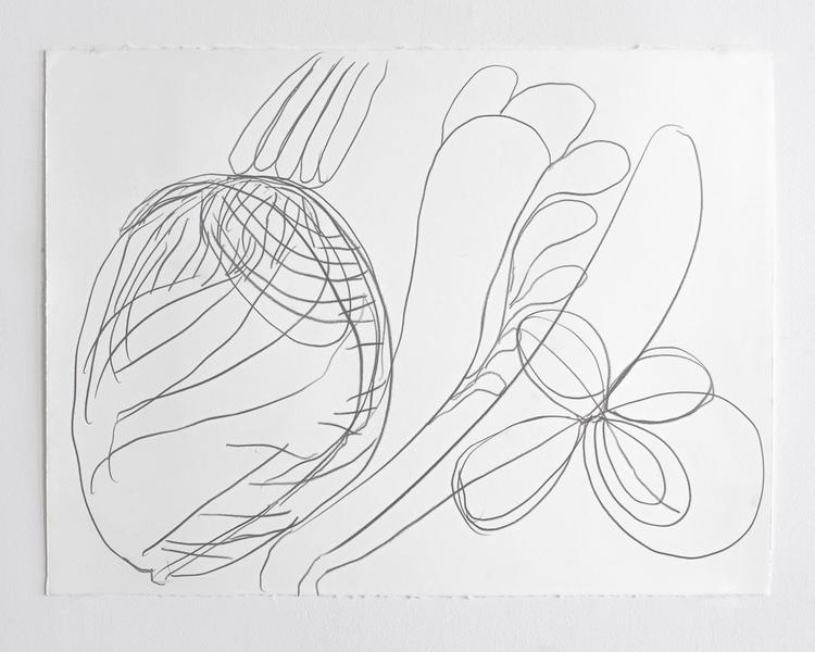 Jack Pierson UNTITLED 2012 Graphite on paper 22 1/2 x 30 inches 57.2 x 76.2 centimeters PI.35167