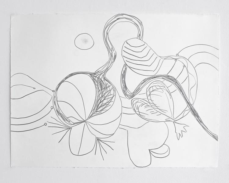 Jack Pierson UNTITLED 2012 Graphite on paper 22 1/2 x 30 inches 57.2 x 76.2 centimeters PI.35168