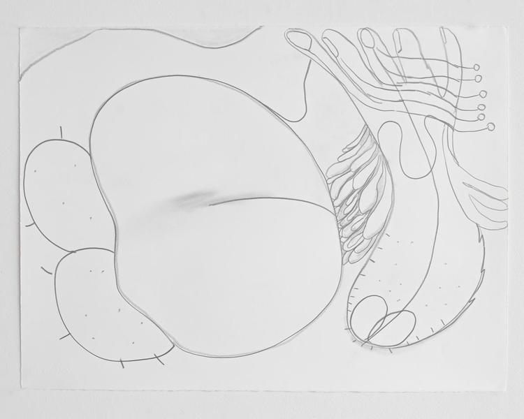 Jack Pierson UNTITLED 2012 Graphite on paper 22 1/2 x 30 inches 57.2 x 76.2 centimeters PI.35171