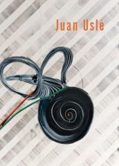 Juan Uslé: Desplazado