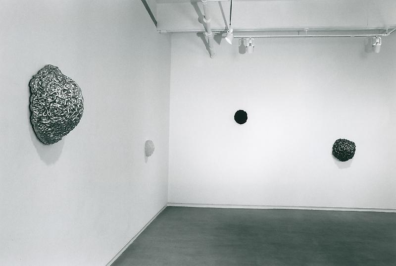 Lynda Benglis: New Work Wols (1913 - 1951): Photographs of the 1930s October 19 - November13, 1999