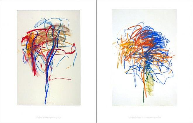 Joan Mitchell: Works on Paper 1956 - 1992 Published by Cheim & Read with Steidl (2007) Essay by John Yau 128 pages with 86 color plates Hardcover