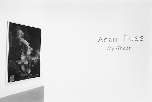 Adam Fuss - My Ghost - Exhibitions - Cheim Read