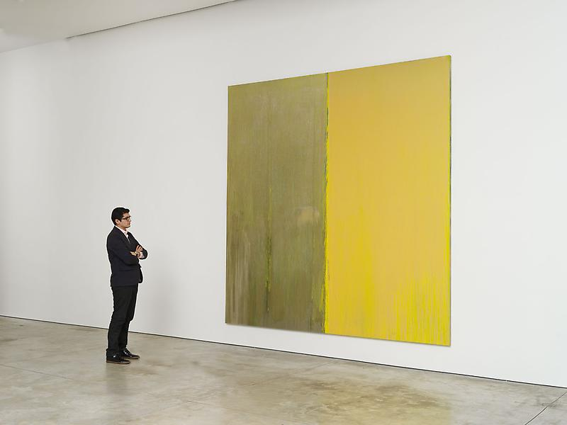 Pat Steir 	February 20 - March 29, 2014